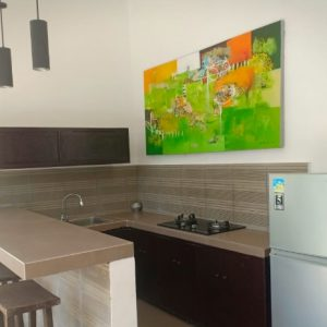 LEASEHOLD TWO BEDROOM COZY VILLA IN KEROBOKAN