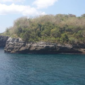 Beach and Cliff front Land 50,000 m2 Nusa Penida Island Bali