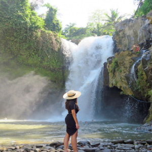 Best of Central Bali: Waterfall, Elephant Cave & Rice Fields