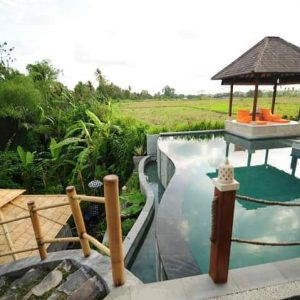 2-Bedroom Pool VILLA in Ubud for sale!